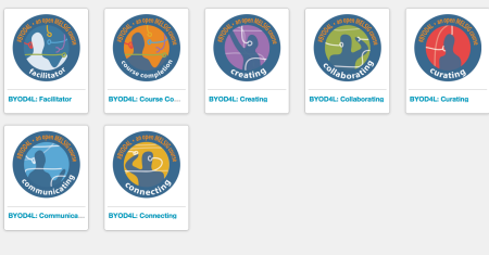 screen shot of digital badges